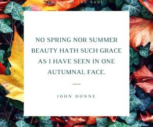 autumn, john donne, and autumnal image
