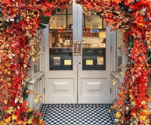 arch, autumn, and door image