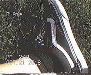 checkered, shoes, and sneakers image