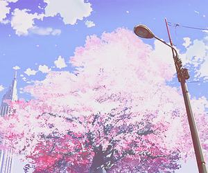 anime, sakura, and adorable image