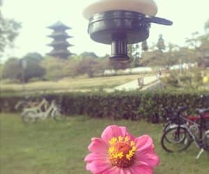 bikes, japan, and nature image