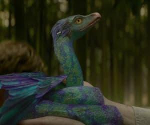 animal, violet, and film image