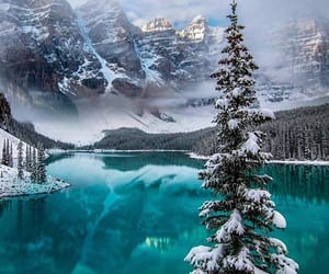 nature, winter, and landscape image