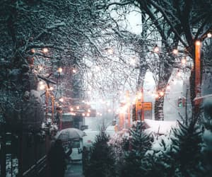 winter, snow, and lights image