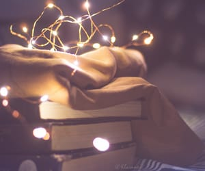 beautiful, books, and cozy image