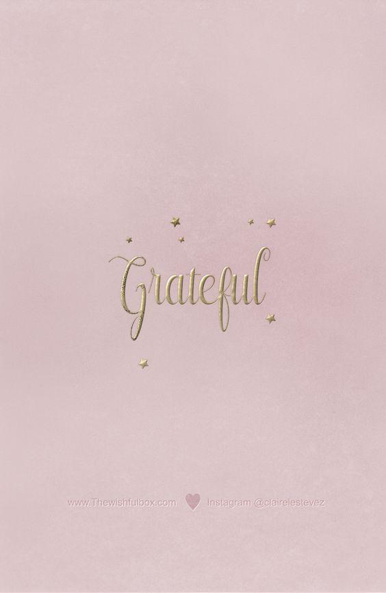 follow clairelestevez on instagram ┄┄⊱♡⊰ grateful