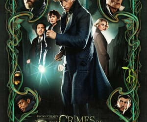 albus dumbledore, scamander, and newt scamander image
