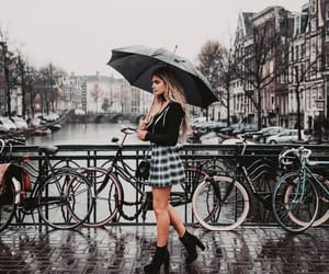 amsterdam, autumn, and fall image