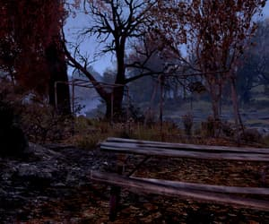 bench, fallout, and park image
