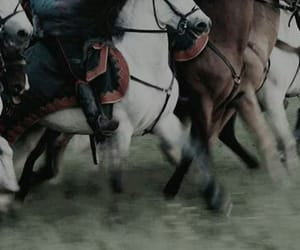 horse and war image