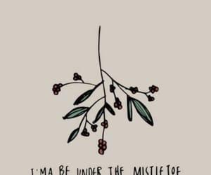 mistletoe, christmas, and winter image