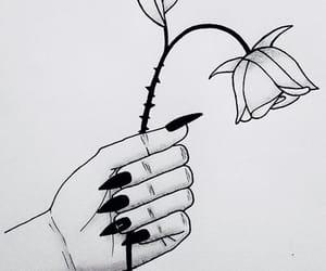 blackandwhite, draw, and flower image