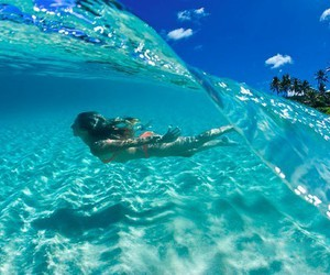 beach, bikini, and underwater image