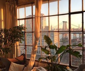plants, window, and city image