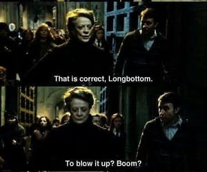 funny, harry potter, and deathly hollows image
