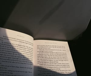 books, words, and flights image
