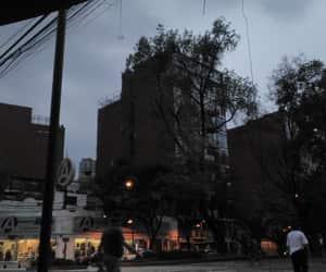 cafe, méxico, and night image