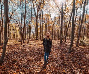fashion, forest, and autumn image