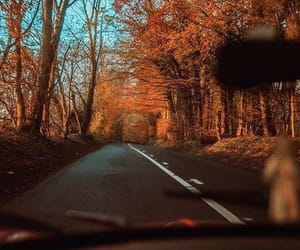 fall drives.