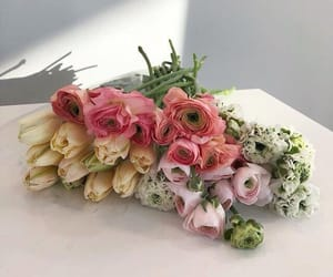 aesthetic, roses, and alternative image