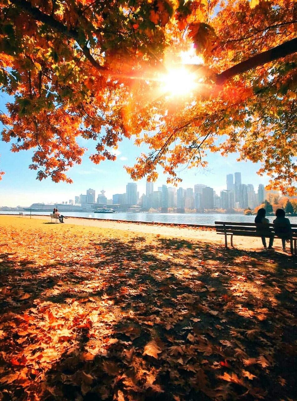 Stanley Park Seawall, Vancouver, Canada 🇨🇦 ➡ Season Autumn 🍁🍃🍂