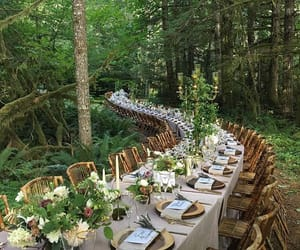alfresco, forest, and seattle image