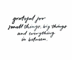 quotes, grateful, and text image
