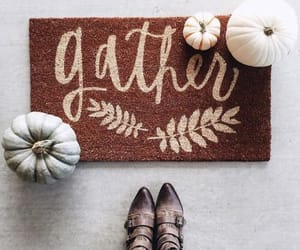 autumn, fall, and gather image