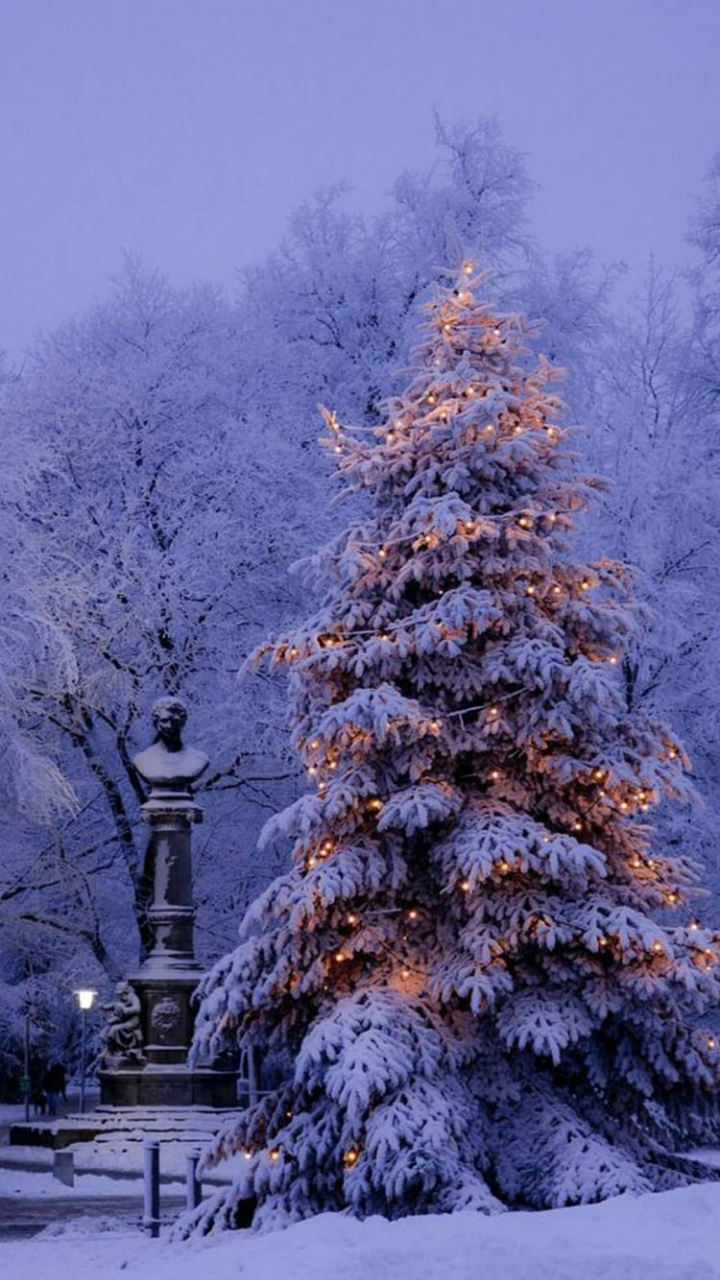 Winter Wallpaper Shared By Alexandralupan On We Heart It