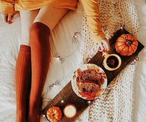 autumn, november, and cozy image