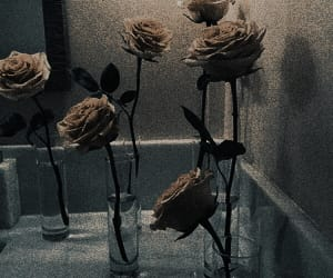 aesthetics, architecture, and dark image