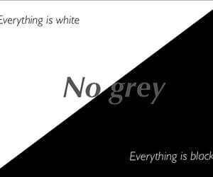 banda, frases, and grey image