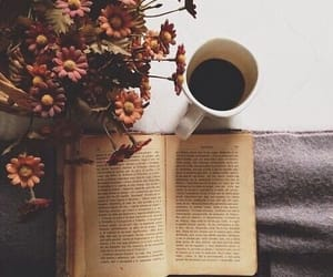 autumn, flowers, and books image