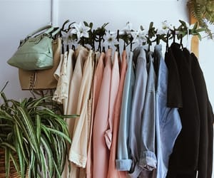 clothing rack and plants image