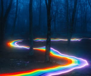 rainbow and forest image