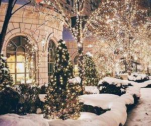 christmas, snow, and winter image