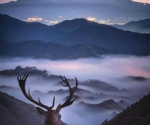 mountains, nature, and animals image
