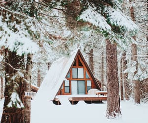 cozy, forest, and white image