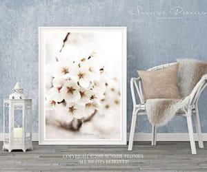 cherry blossom, etsy, and naturephotography image