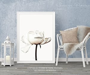 classy, digital painting, and nature photography image