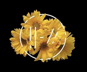 yellow, twenty one pilots, and flowers image