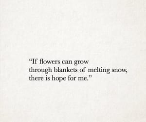 flower, grow, and hope image