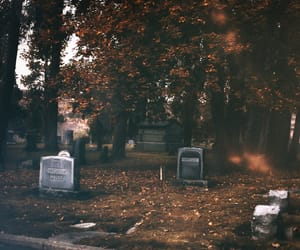 adventure, cozy, and grave image