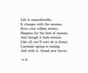 quotes, life, and season image