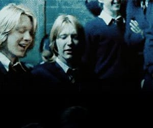 harry potter and harry potter gifs image