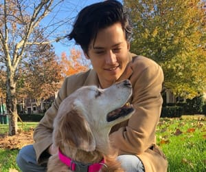 dog, cole sprouse, and boys image