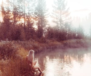 autumn, photography, and ethereal image
