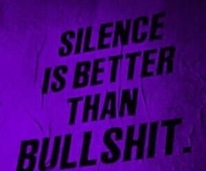 bullshit, quotes, and silence image