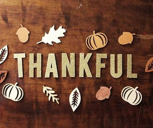 autumn, brown, and thanksgiving image