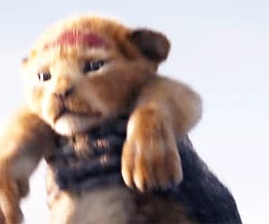 disney, gif, and the lion king image